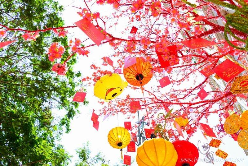 things-to-do-in-saigon-tet-celebration
