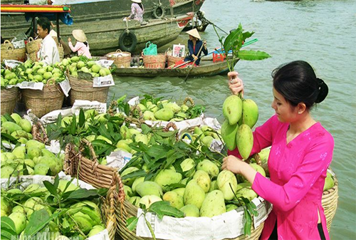 cai rang floating market_fruit