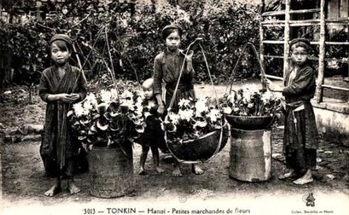 The Old Hanoi Tet 1