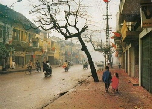 The Old Hanoi Tet 29