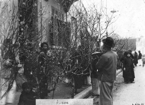 The Old Hanoi Tet 6