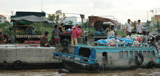 Mekong Delta markets 8
