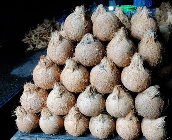 Mekong Delta markets - vietnam
