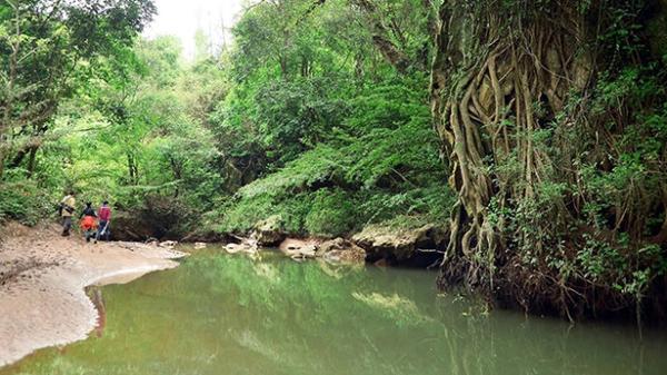 Phong nha - vietnam 3