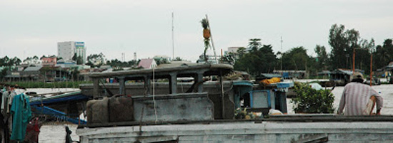 Vietnam_Mekong Delta_mekong floating market pineapple boat