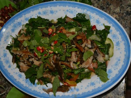 Snakeskin Gourami salad